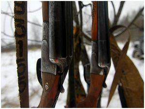 Сколько ружей нужно охотнику?