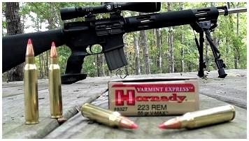 223 боеприпасов для охоты на оленей: конструктивные особенности и 6 основных обзоров