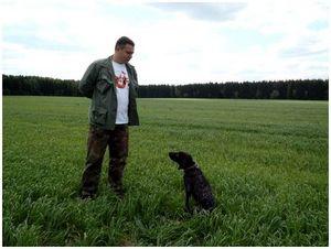 Итоги межпородных командных состязаний легавых собак по болотно-луговой дичи