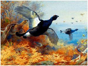 Осенняя охота натетеревов счучелами