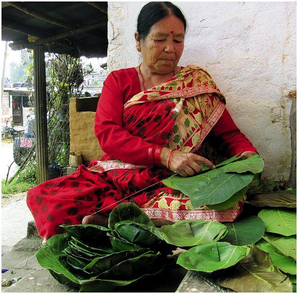 Тераи Непала