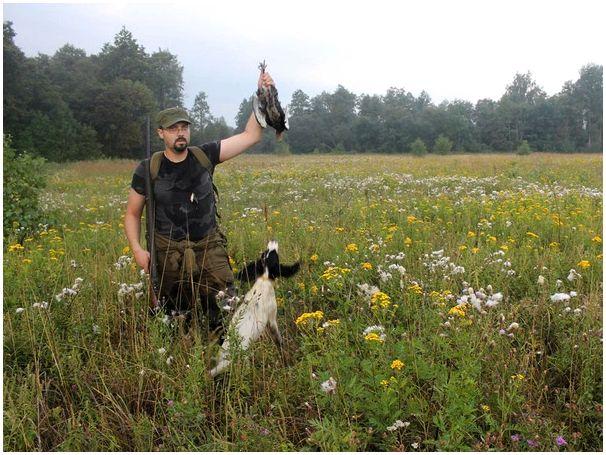 Удачный сезон. Итоги моих охот в летне-осеннем сезоне 2012 года