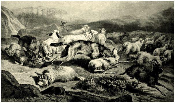 Время волков