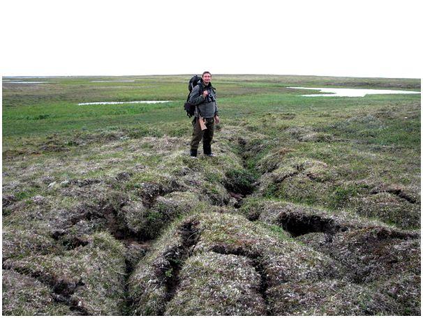 Альтернатива болотникам?