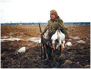 К вопросу о весенней охоте на гусей