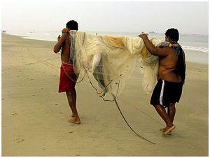 Морская рыбалка виндийской Керале