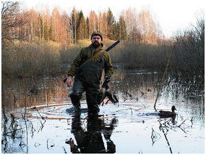 Об использовании  водоплавающей дичи  на весенней охоте