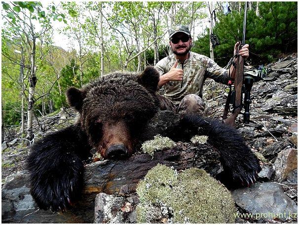 Страна черного медведя