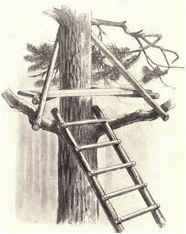 Как построить лабаз своими руками