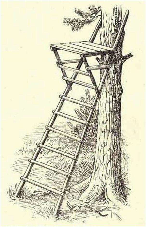 Строительство лабаза