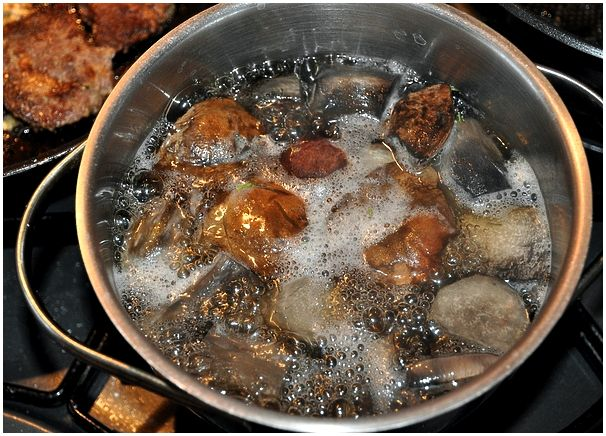 Тефтели из косули в пивном соусе с вишней