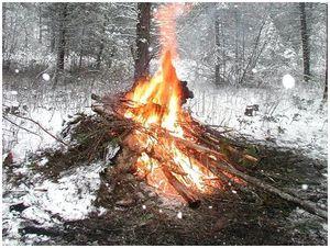 Уроки выживания. Ночуем в зимнем лесу