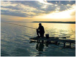 В мутных водах Каховки