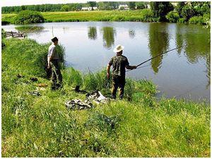Волга, пруд и малая река