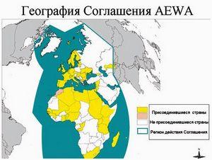 AEWA: мифы и реальность
