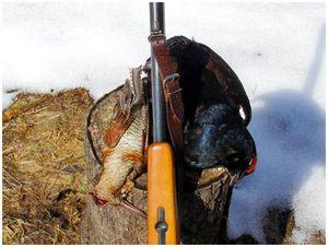 Быть охотником, а не истребителем