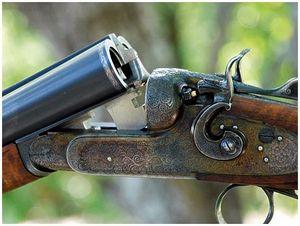 Два ружья мастера Тетеркина