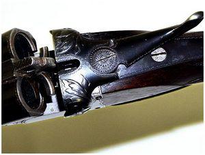 Голосистое ружье