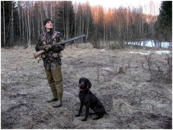 На весенней охоте должен быть порядок
