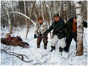 Охота после конца света