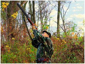 Охотнику – о баллистике