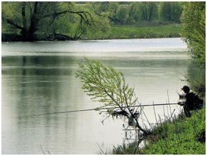 Особенности рыбалки в межень
