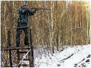 Практическая стрельба длязверового охотника