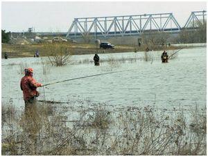 Рыбалка на пике половодья