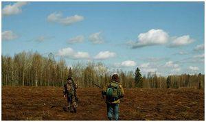Что творится с охотничьими угодьями
