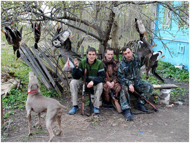 Гусиная охота  на юге  Украины