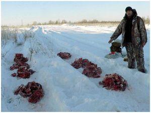 Как делили мясо в Ивановской области