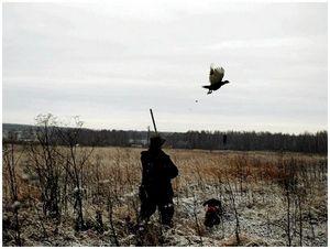 Охотники и фермеры: новая проблема