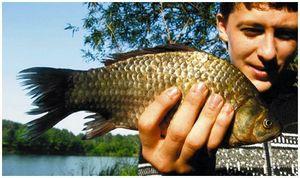 Особенности рыбалки  в летний период