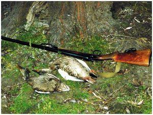 Открытие охоты  в Астрахани