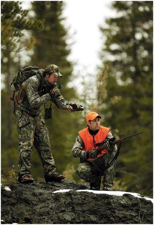 Почему в Россию не едут иностранные охотники?