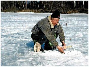 Щуки в сезон  ледостава