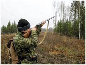 Школа стрельбы влет