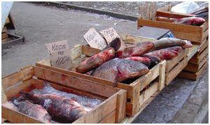 Сколько стоит рыба?