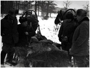 Тульское общество правильной охоты