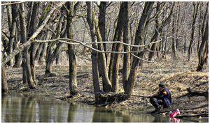 Весной  на малых  реках  и в верховьях  проточных  прудов