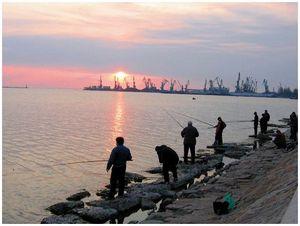 «Вобла-2013»  и ситуация в рыбной столице