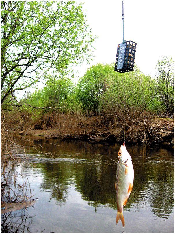 Альтернатива  фидеру  на малой реке
