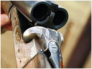 Что нужно, чтобы стать охотником или обладателем оружия?