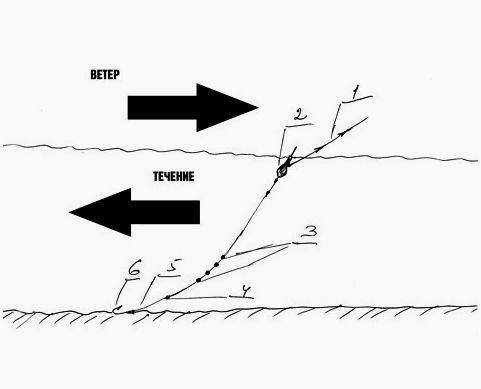 Фактор ветра