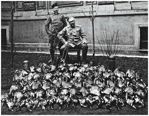 Из охотничьего рода Романовых