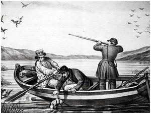 К пересмотру законов об охоте