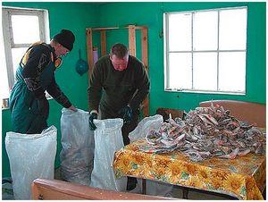 На юг за зимней рыбалкой