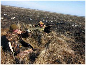 Новые правила охоты  вступают в силу с 15 июня