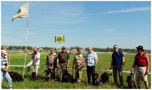 О всероссийской  выставке  охотничьих собак  в Туле – 2012