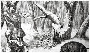 Об охотниках XIX века